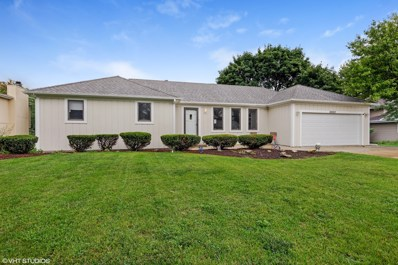 25223 W Willow Drive, Plainfield, IL 60544 - MLS#: 10073177