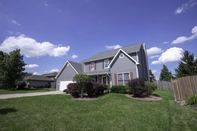 103 Brett Court, Manhattan, IL 60442 - #: 10073364