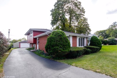 7009 W 113th Street, Worth, IL 60482 - #: 10073602