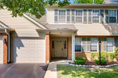 54 Brookston Drive UNIT B1, Schaumburg, IL 60193 - #: 10073737