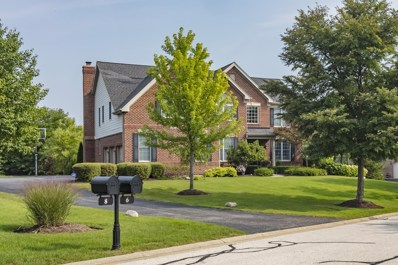 6 Twin Eagles Court, Hawthorn Woods, IL 60047 - #: 10073882