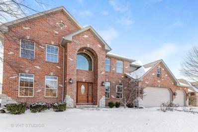 133 Pineridge Drive SOUTH, Oswego, IL 60543 - MLS#: 10073923