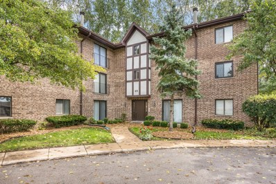 48 Harbor Court UNIT 204, Naperville, IL 60565 - #: 10074066