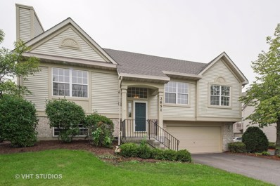 2651 Woodmere Drive UNIT 2651, Darien, IL 60561 - MLS#: 10074100
