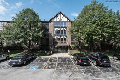 10351 Menard Avenue UNIT 315, Oak Lawn, IL 60453 - MLS#: 10074440