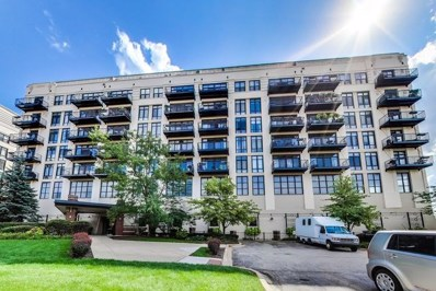 1524 S Sangamon Street UNIT 302-S, Chicago, IL 60608 - MLS#: 10074582