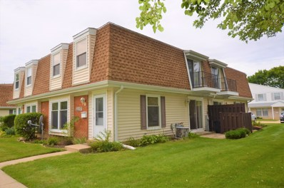 2237 Flower Court UNIT 0, Schaumburg, IL 60194 - #: 10074893
