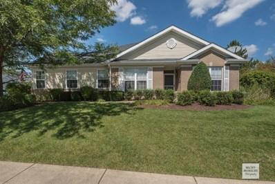 21244 W Crimson Court UNIT NA, Plainfield, IL 60544 - #: 10075037