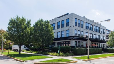 1069 W 14th Place UNIT 210, Chicago, IL 60608 - #: 10075452