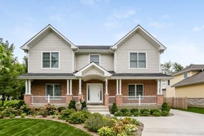 399 E Council Trail, Arlington Heights, IL 60005 - MLS#: 10075625