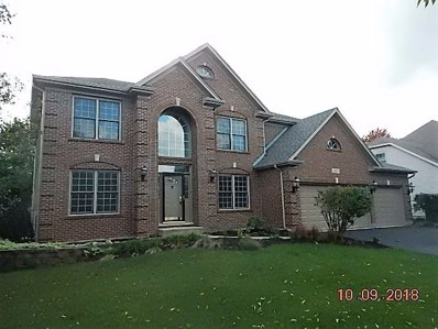 24353 Eagle Chase Drive, Plainfield, IL 60544 - MLS#: 10075811