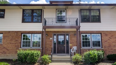 205 Washington Square UNIT A, Elk Grove Village, IL 60007 - MLS#: 10075882