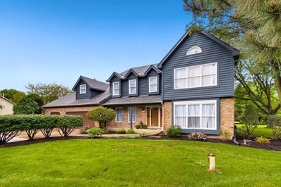 23740 W Deer Chase Lane, Naperville, IL 60564 - #: 10076599