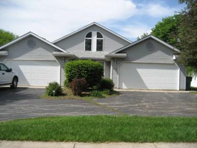 828 E Kahler Road, Wilmington, IL 60481 - #: 10076618