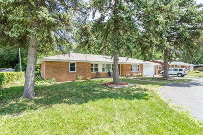 203 Coldren Drive, Prospect Heights, IL 60070 - MLS#: 10076684