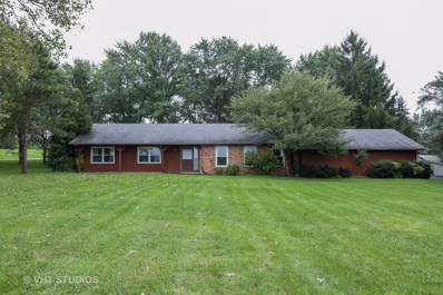6663 W DRALLE Road WEST, Monee, IL 60449 - #: 10076797