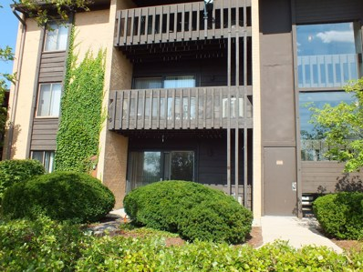 6108 Knoll Valley Drive UNIT 108, Willowbrook, IL 60527 - MLS#: 10077023