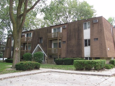 212 Madison Street UNIT 3C, Joliet, IL 60435 - MLS#: 10077049
