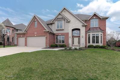 528 Eagle Brook Lane, Naperville, IL 60565 - #: 10077081