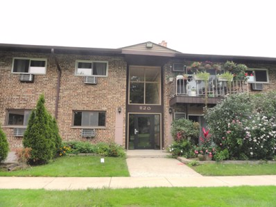 820 E Old Willow Road UNIT 6-112, Prospect Heights, IL 60070 - #: 10077122