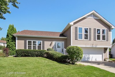 1256 Amberwood Drive, Crystal Lake, IL 60014 - #: 10077273