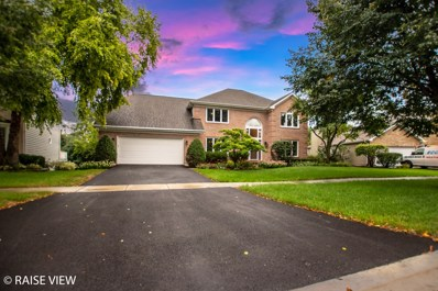 6709 Greene Road, Woodridge, IL 60517 - #: 10077290