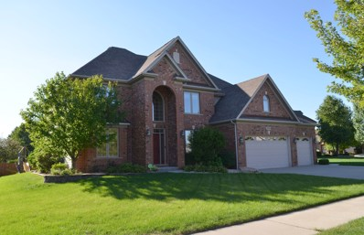 26024 WHISPERING WOODS Circle, Plainfield, IL 60585 - MLS#: 10078297