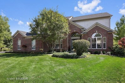 16 Rock River Court, Algonquin, IL 60102 - #: 10078668