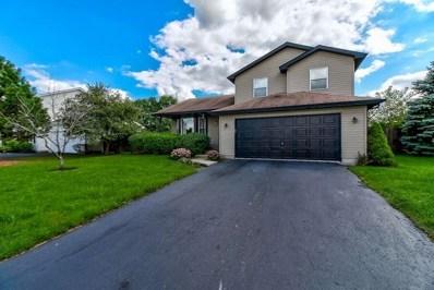 6606 Goldhaber Lane, Plainfield, IL 60586 - #: 10078860