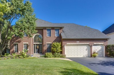 3807 Looking Post Court, Naperville, IL 60564 - #: 10079112