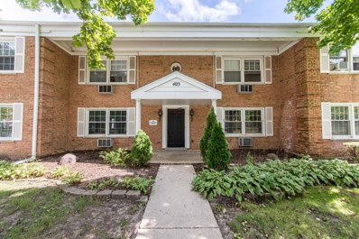403 N Kennicott Avenue UNIT 1N, Arlington Heights, IL 60005 - #: 10079346