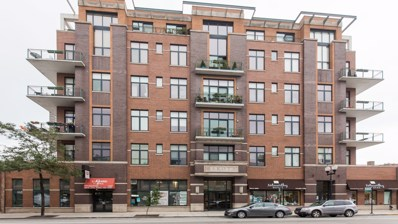 3631 N Halsted Street UNIT 407, Chicago, IL 60613 - #: 10079616