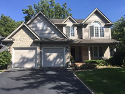 4919 Woodward Avenue, Downers Grove, IL 60515 - #: 10079731