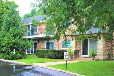 191 Hillcrest Terrace UNIT 1B, Bloomingdale, IL 60108 - MLS#: 10079791