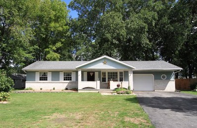 225 S Countryside Court, Braidwood, IL 60408 - #: 10080191