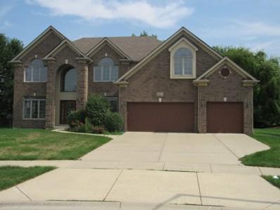 487 Danbury Court, Oswego, IL 60543 - #: 10080489