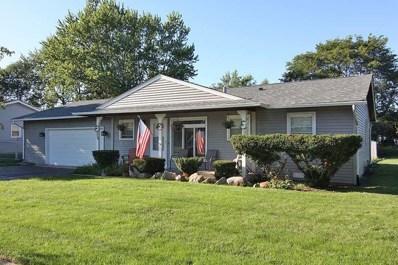 999 Cooper Court, Elk Grove Village, IL 60007 - #: 10080518
