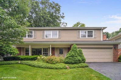 419 The Lane, Hinsdale, IL 60521 - #: 10080843