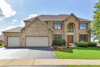 13502 Summergrove Drive, Plainfield, IL 60585 - #: 10081228