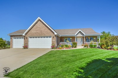 1053 Hummingbird Lane, Peotone, IL 60468 - #: 10081948
