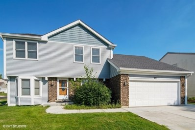 637 N Walnut Lane, Schaumburg, IL 60194 - #: 10081983