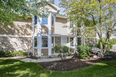 58 Woodstone Court, Buffalo Grove, IL 60089 - MLS#: 10082262