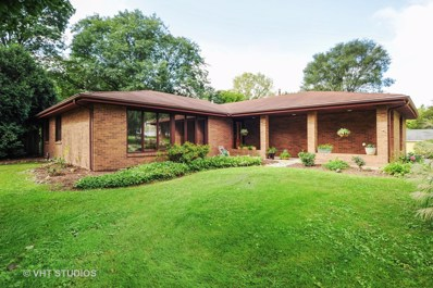 813 Area Street, Mchenry, IL 60051 - #: 10082858