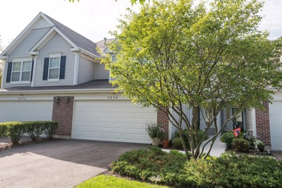 3054 Crystal Rock Road, Naperville, IL 60564 - MLS#: 10083478