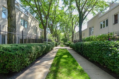 1060 S Plymouth Court UNIT 411, Chicago, IL 60605 - MLS#: 10083752
