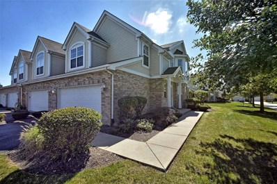 16159 Hackney Drive, Orland Park, IL 60467 - MLS#: 10083951