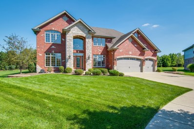 8004 Nature Creek Court, Frankfort, IL 60423 - MLS#: 10084029