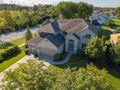 10401 Great Egret Drive, Orland Park, IL 60467 - #: 10084115