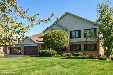 19317 Everett Lane UNIT 0, Mokena, IL 60448 - #: 10084534