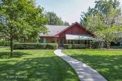 110 The Lane, Hinsdale, IL 60521 - #: 10085313